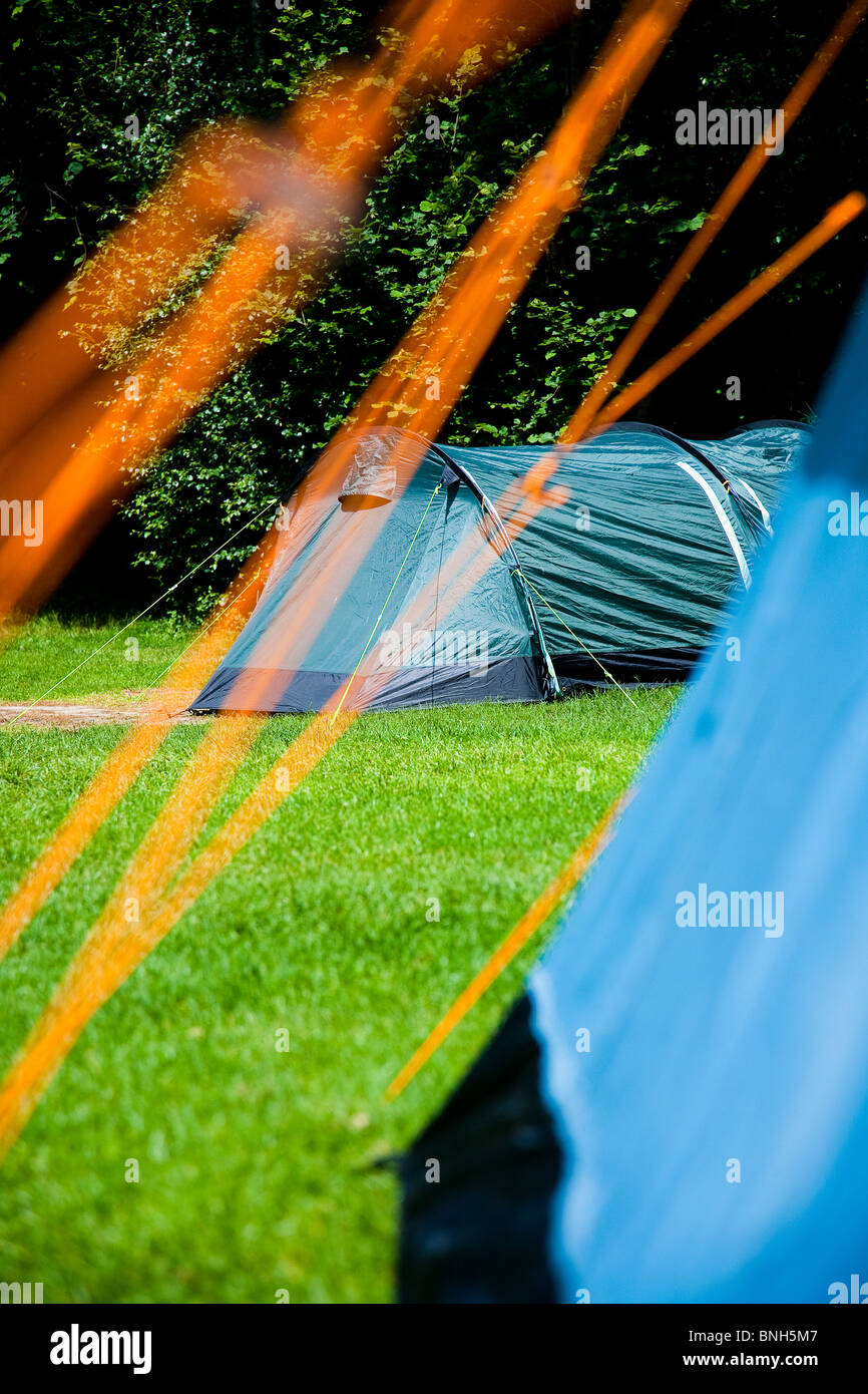 Woodland farm campsite, Kent. View through guide ropes of tent - Stock Image