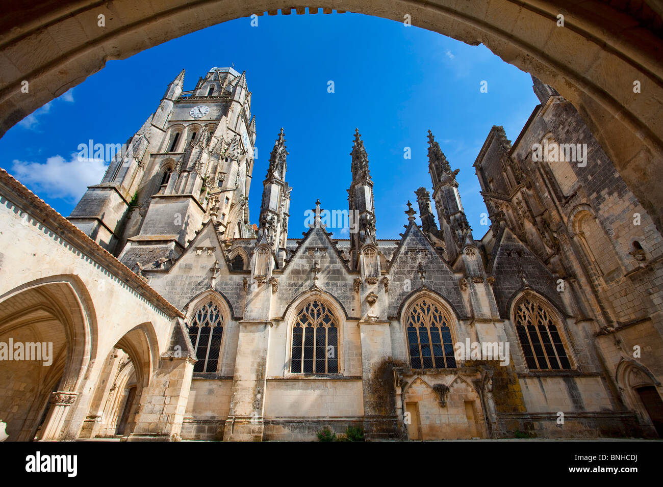 Europe, France, Charente-Maritime (17), Saintes, Saint-Pierre Cathedral - Stock Image
