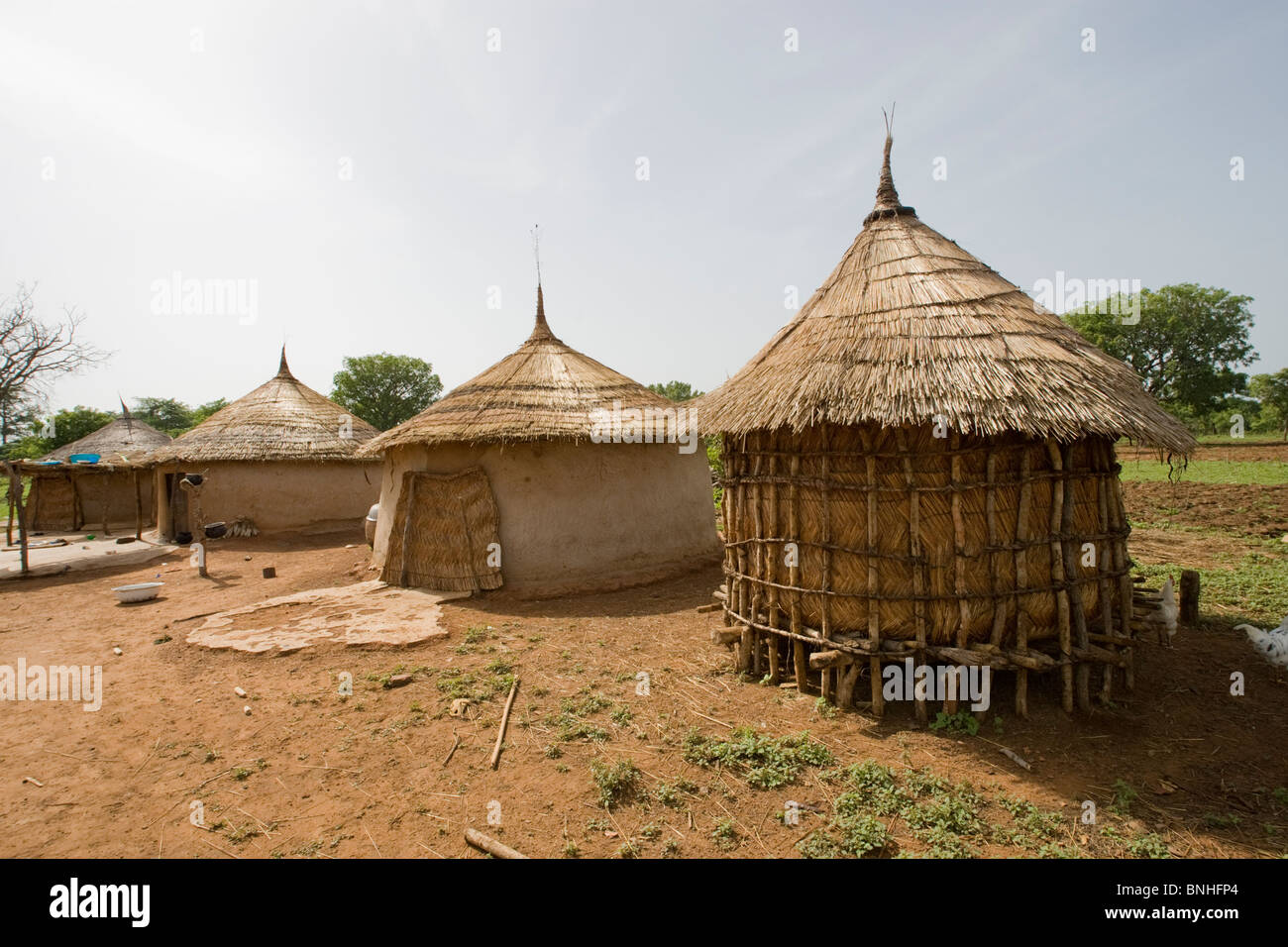 Food store in a Fulani household in the village of Sor No. 1, Gonja triangle, Damango district, Ghana. - Stock Image
