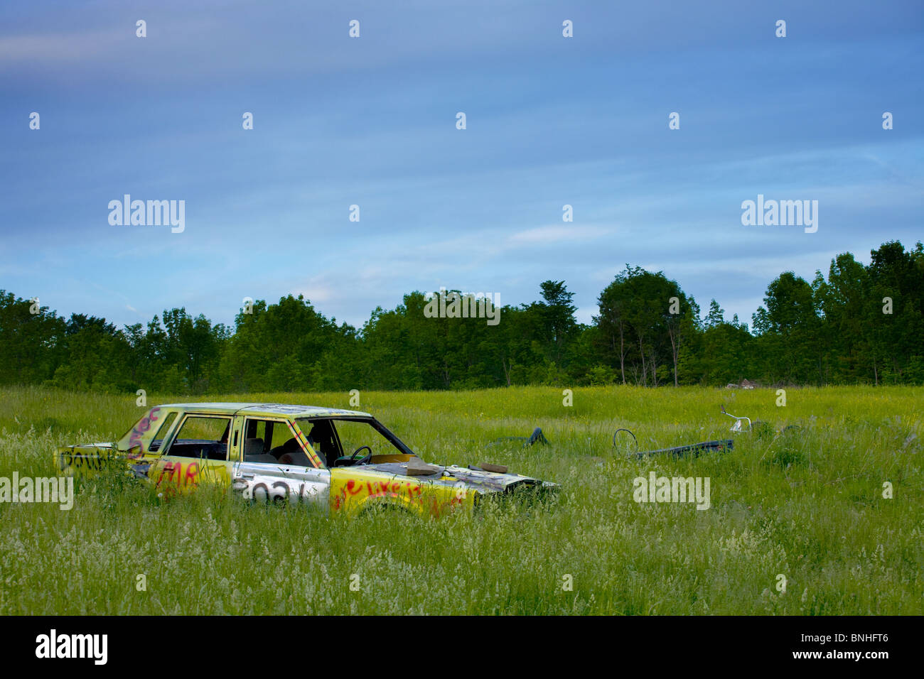Demolition car rusting in field in Schoharie Valley, New York State - Stock Image