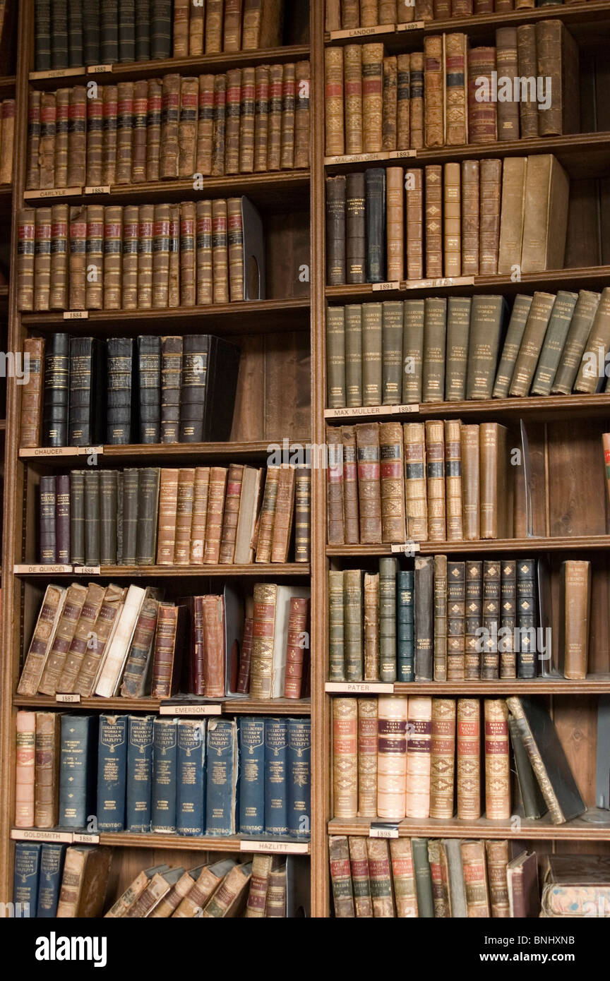 Books leather old antique classically valuably collection library shelve regale lined up academy student pupil specialist - Stock Image