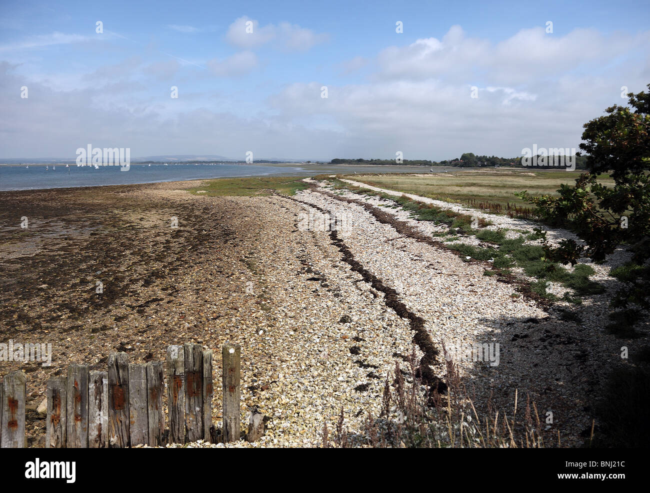 Ella Nore, a shingle spit in Chichester Harbour between Itchenor and West Wittering - Stock Image