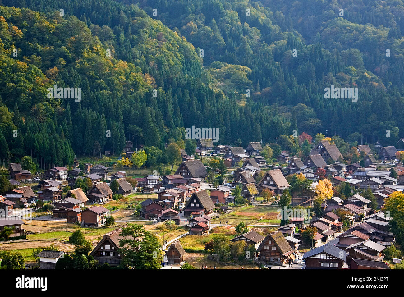 Japan Asia Shirakawa Go city straw roof thatched roof houses homes UNESCO world cultural heritage straw roof village, - Stock Image