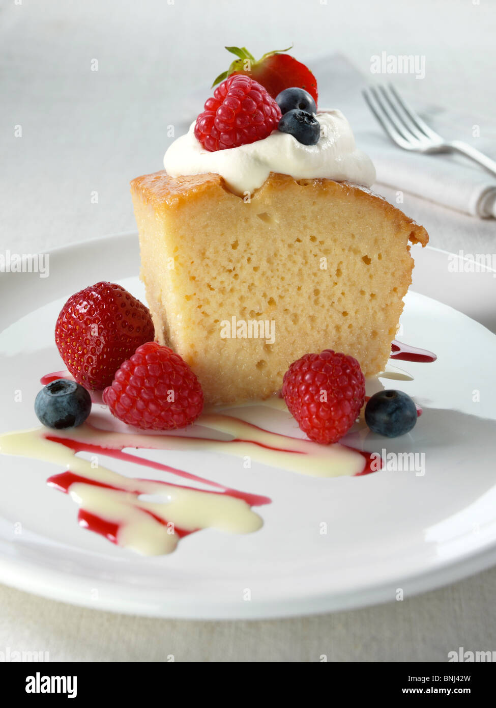 Looking For A Recipe With Lemon Cake Condensed Milk
