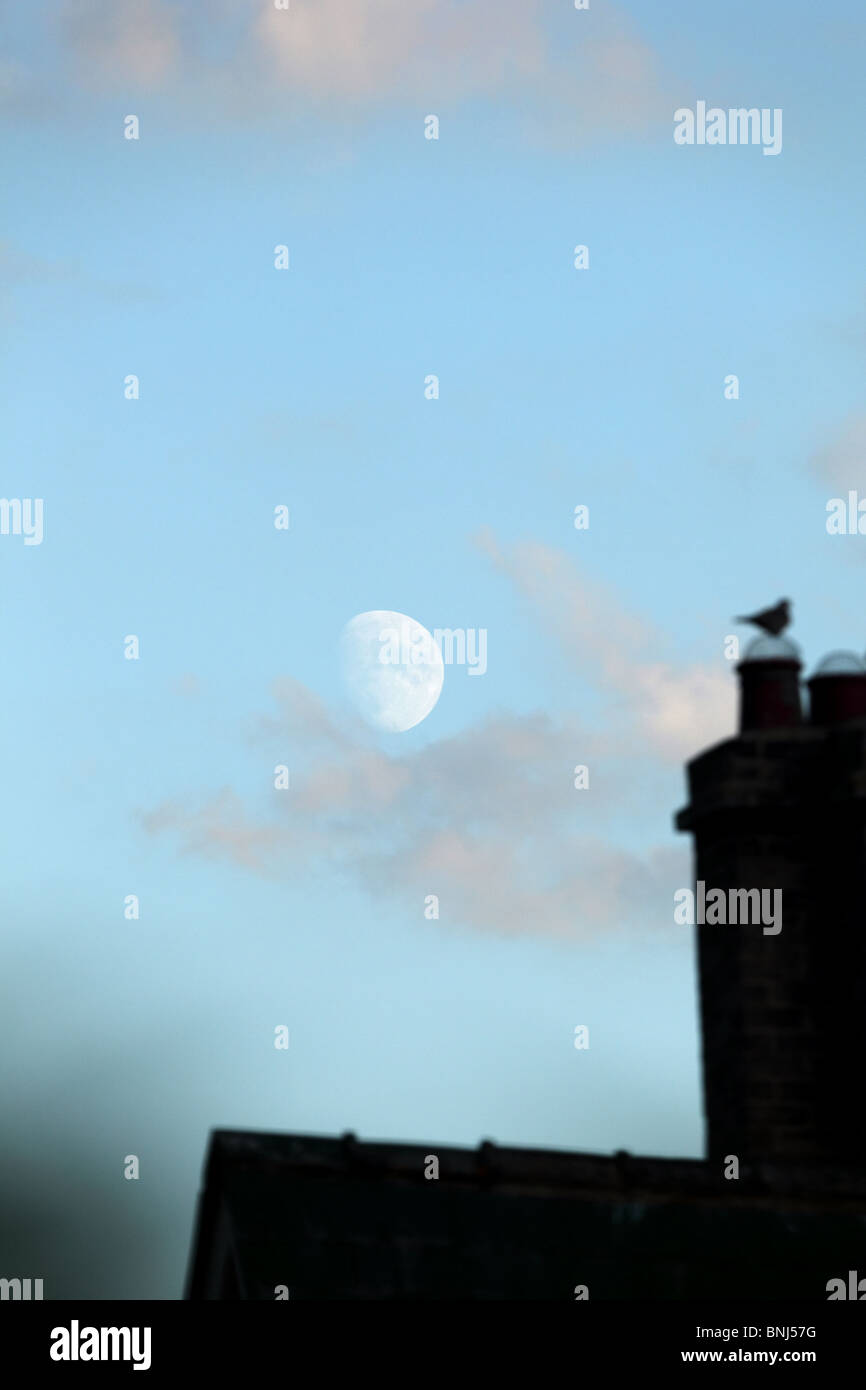 Moon over rooftop - Stock Image