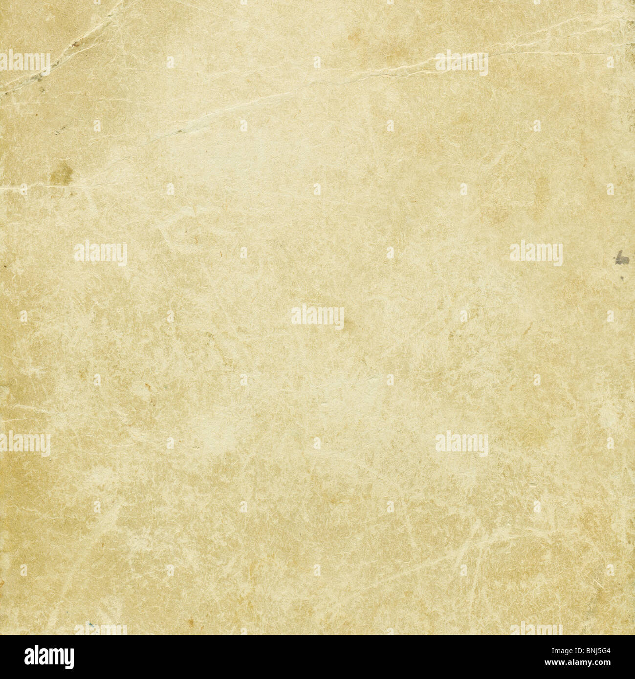 Old paper grunge background. High detailed texture. - Stock Image