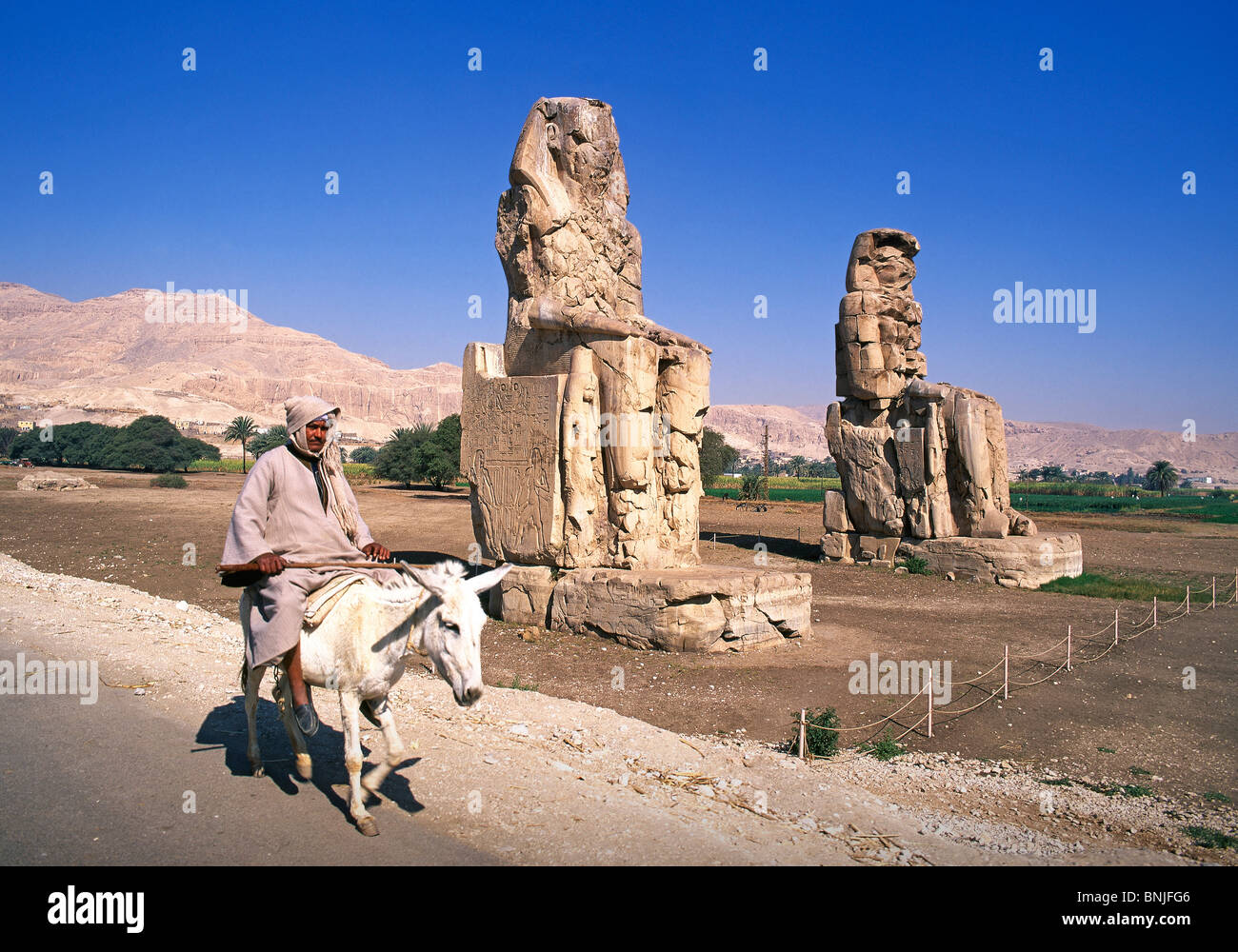 Egypt March 2007 Luxor city Colossi of Memnon ancient historic culture donkey man riding - Stock Image