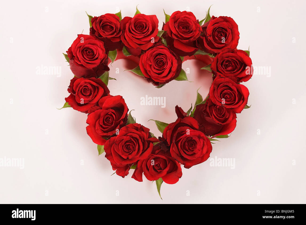 Genre Flower Flowers Gift Heart In Love Love Loving Red Rose Rose