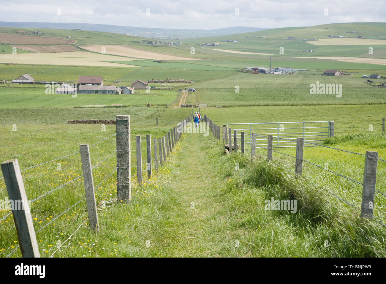 Walkers Orkney Islands LA005069 - Stock Image