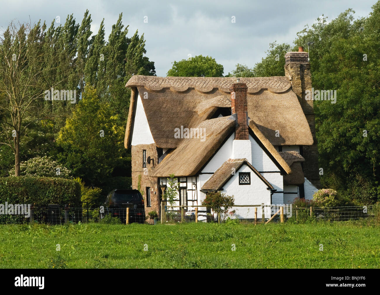 Beautiful thatched cottage in the country,next to River Lugg,Aymestrey - Stock Image
