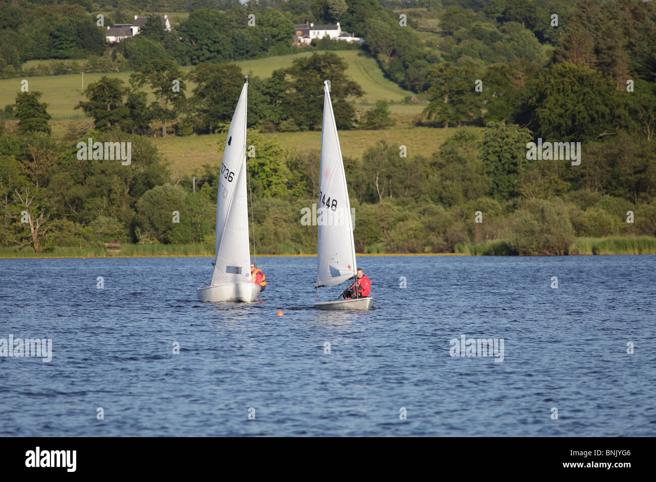 Sailing boats racing on Castle Semple Loch in Clyde Muirshiel Regional Park Lochwinnoch Renfrewshire Scotland UK - Stock Image