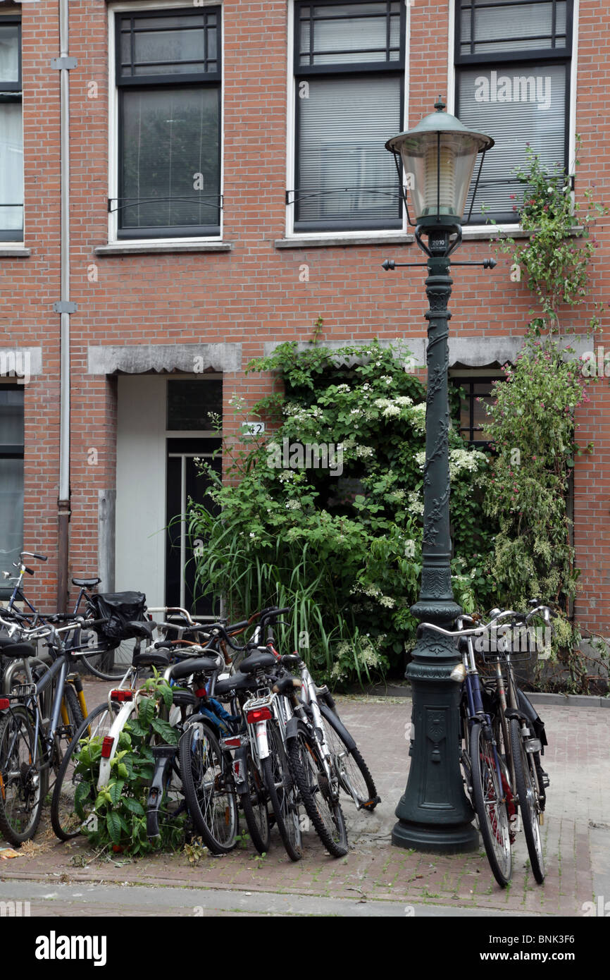 House and shrubbery and bicycles and lamppost in Amsterdam - Stock Image