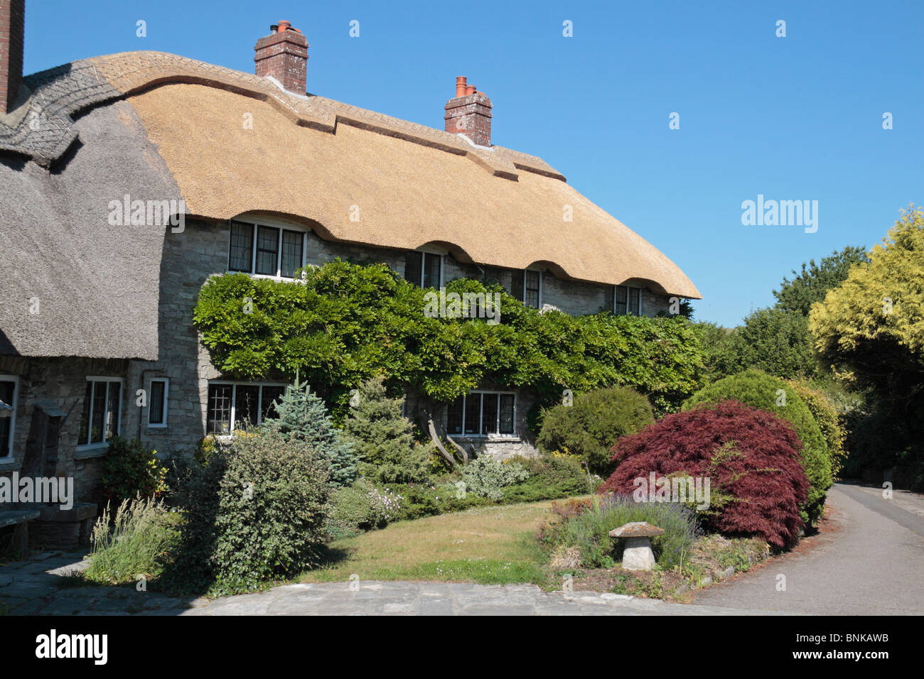 A pretty thatched cottage and garden in the pretty English village of Corfe Castle, Dorset, UK. - Stock Image