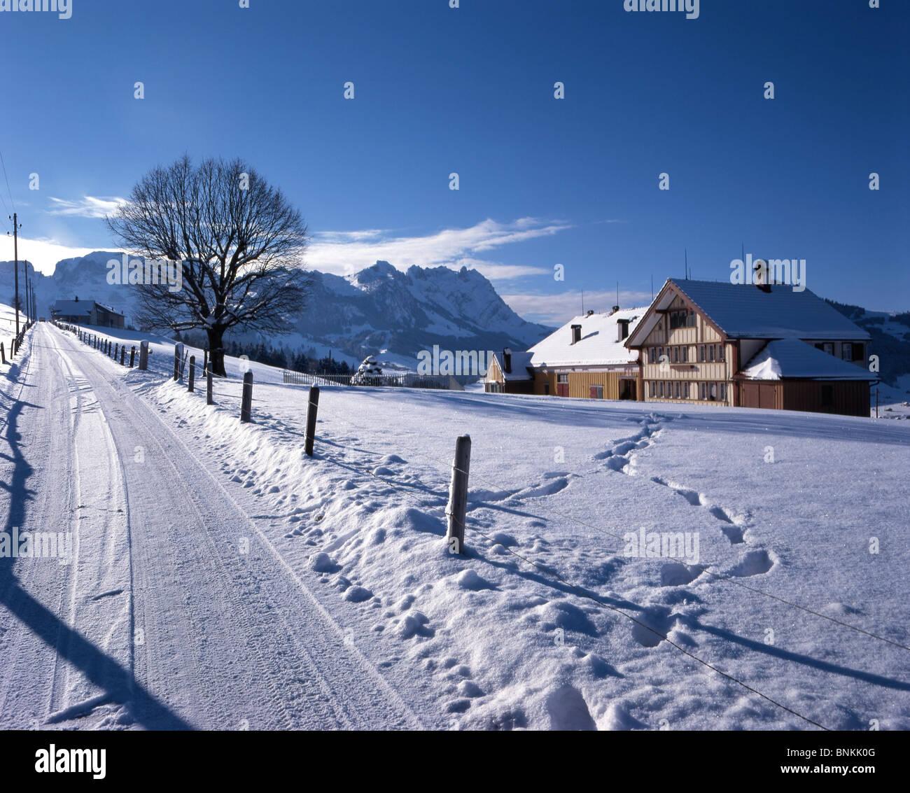 Switzerland Winter Scenery Moor Canton Appenzell