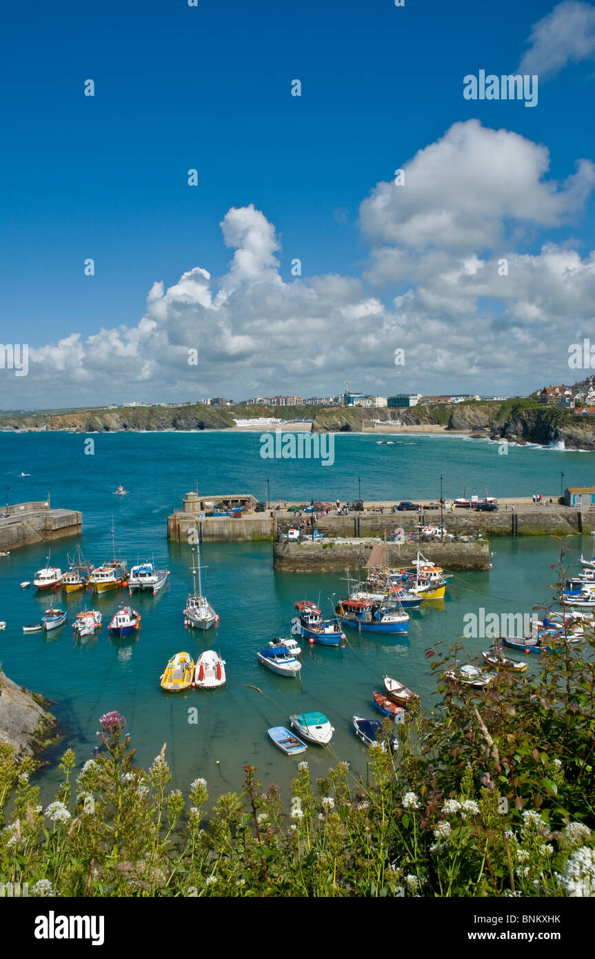 Looking down on the harbour Newquay Cornwall England - Stock Image