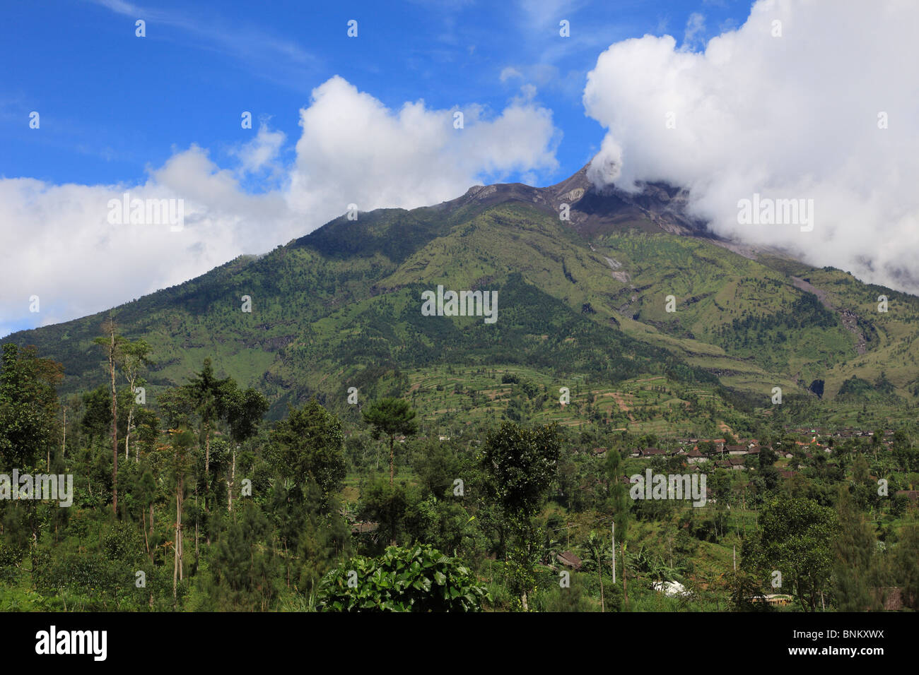 Indonesia, Java, Gunung Merapi volcano; tropical vegetation; - Stock Image
