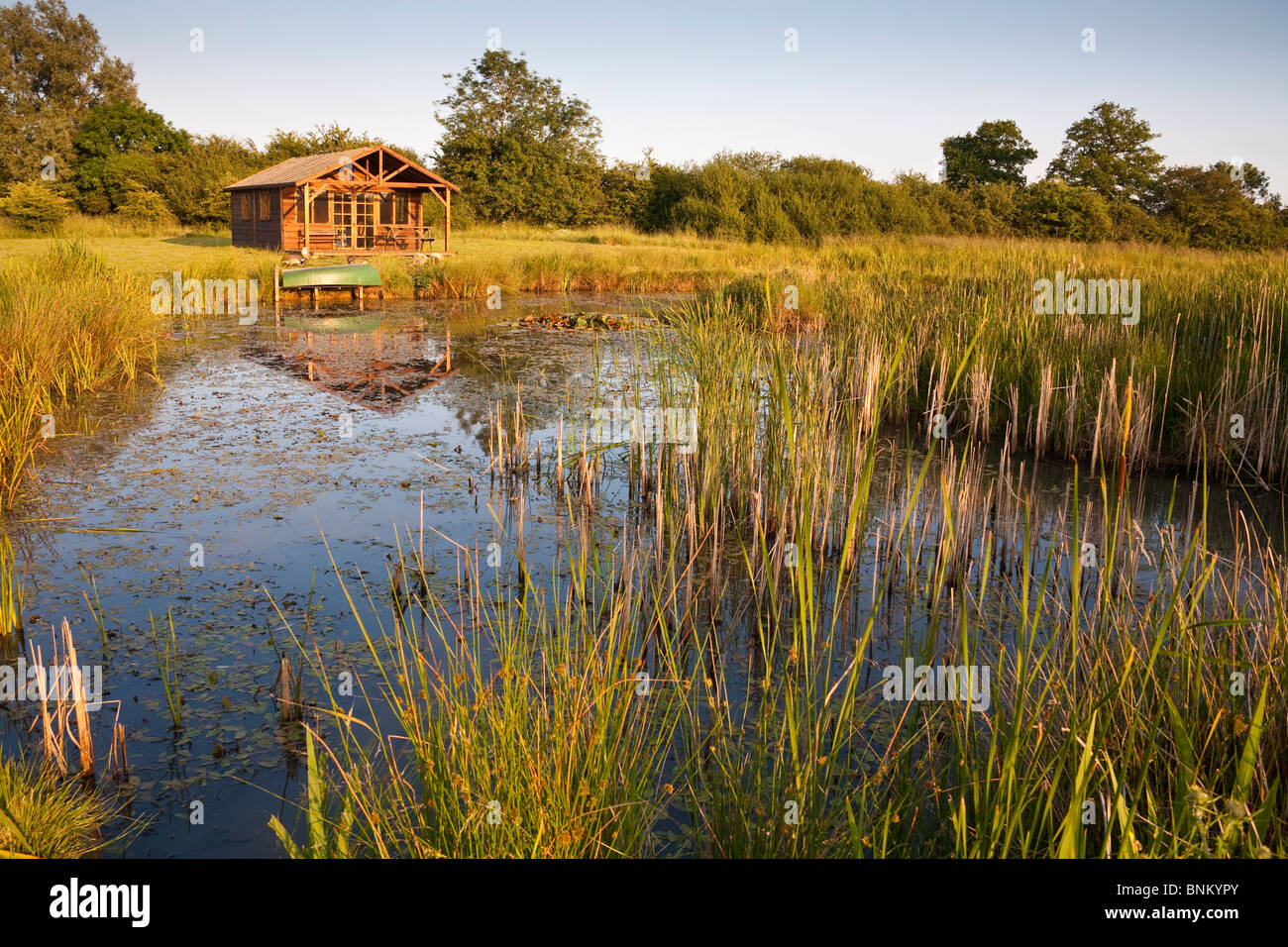 Large pond and summerhouse in the countryside, Wiltshire, England - Stock Image