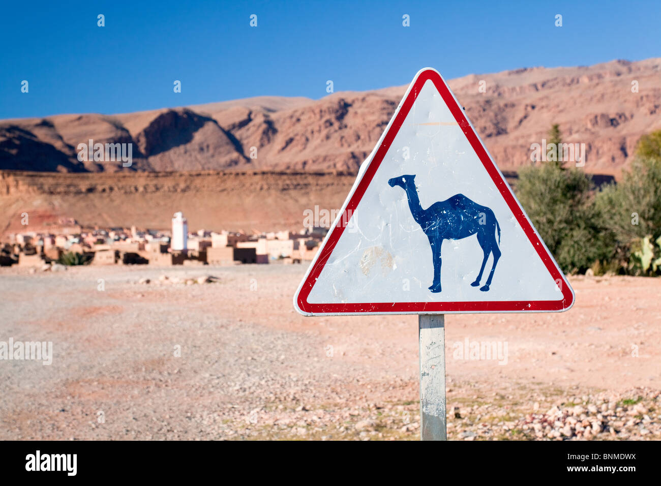 Camel road sign, Tinerhir, Dades Valley, Morocco - Stock Image