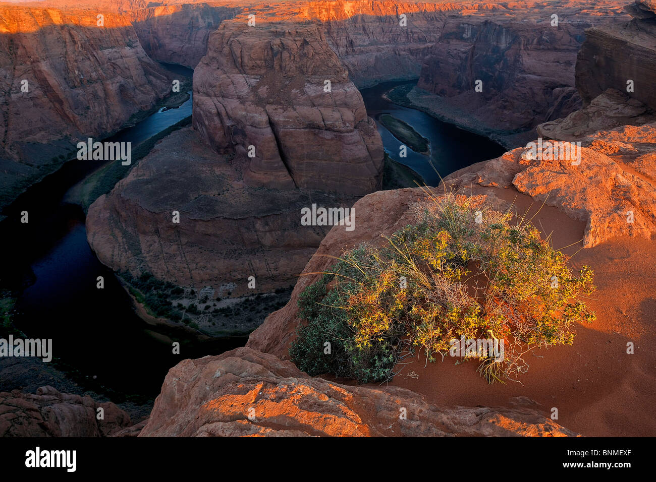 First light along the rim of Horseshoe Bend as Colorado River flows below, Page, Arizona, USA. - Stock Image