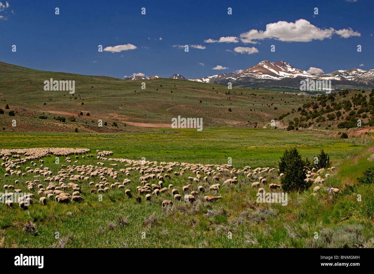 Highway 395 Stock Photos & Highway 395 Stock Images - Alamy