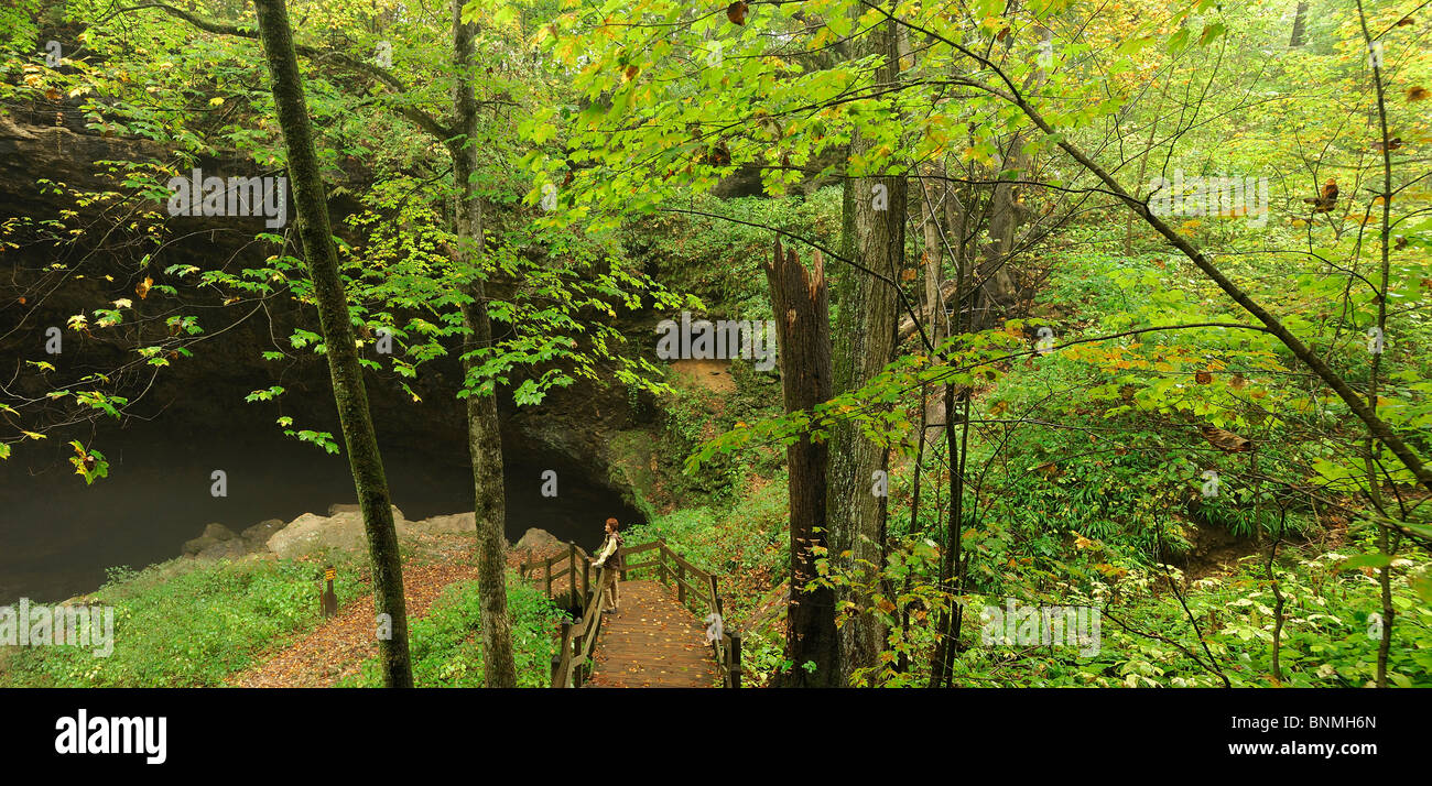 Person woman standing viewing platform stairway Maquoketa Caves State Park Iowa USA wood nature green autumn America - Stock Image