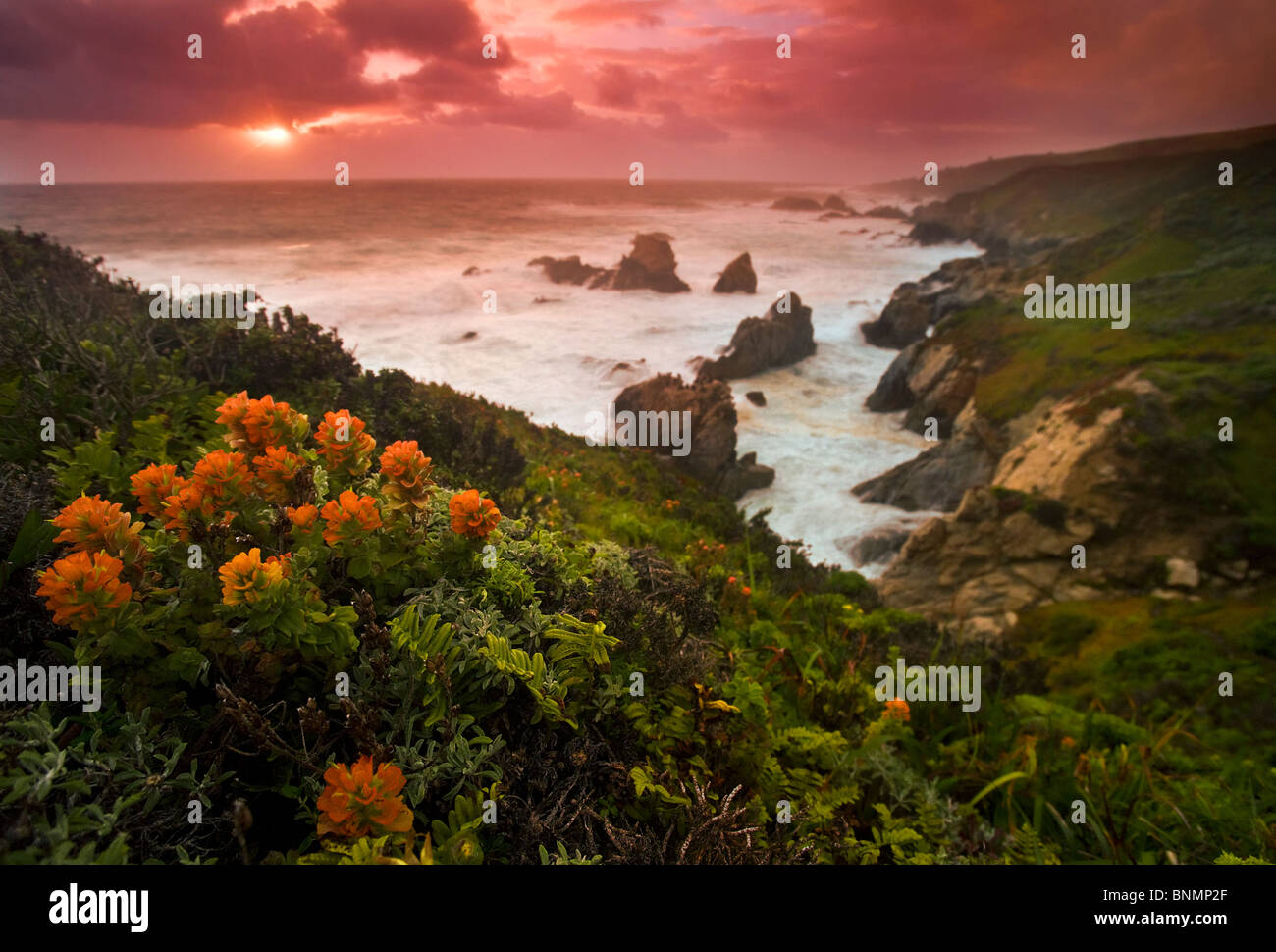 Big Sur coast, California, USA. - Stock Image