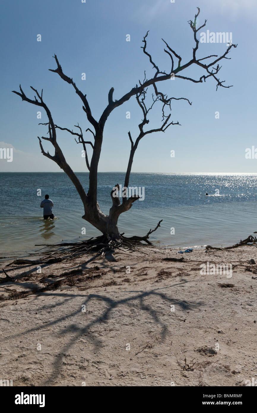 Isla Holbox, Quintana Roo, Mexico - Stock Image