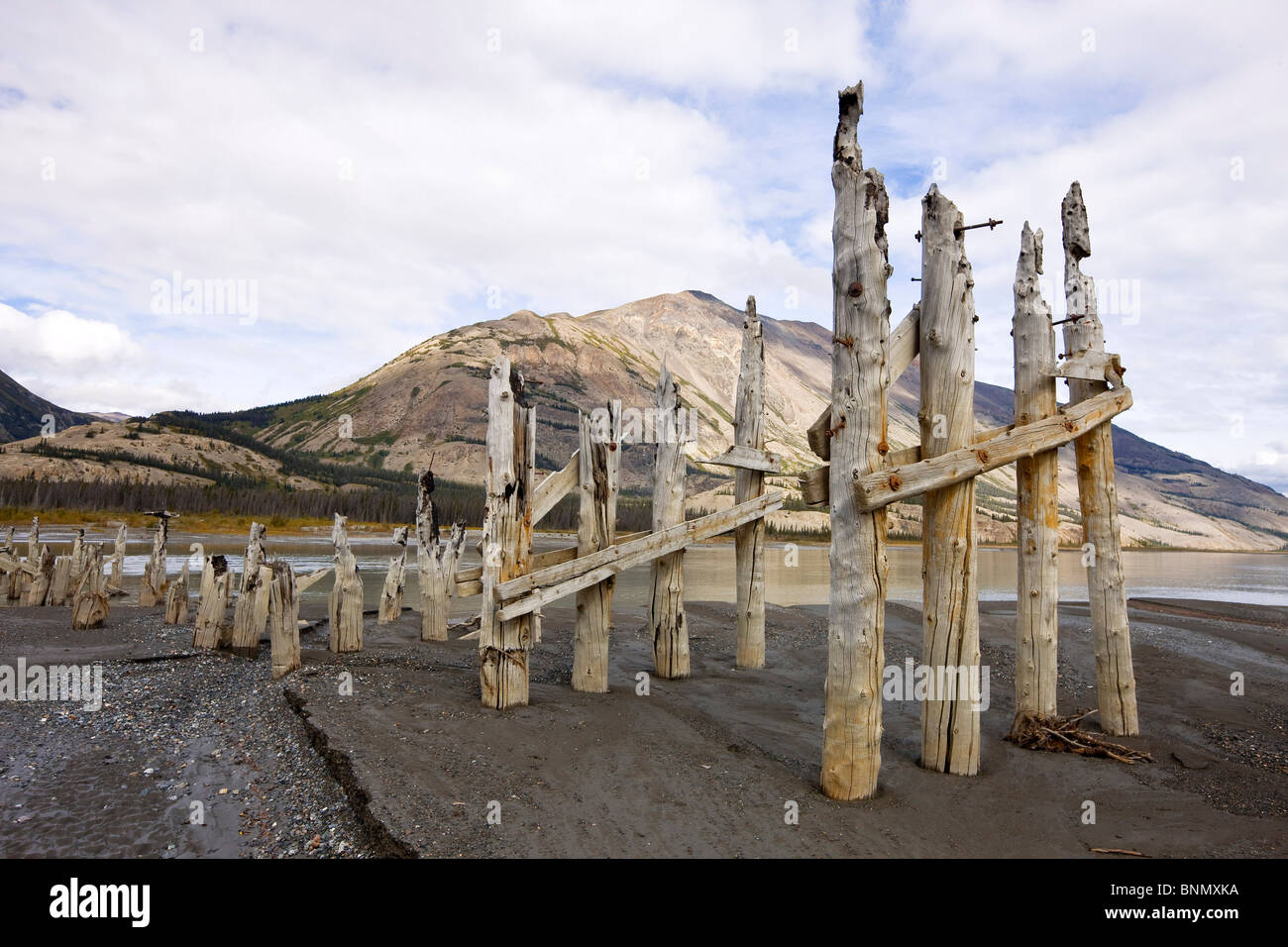 Pillings from the original Slims River Bridge with Sheep Mountain in the background, Kluane National Park, Yukon, - Stock Image