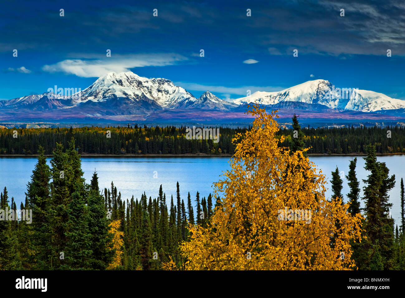 Scenic view of Mt. Sanford and Mt. Drum with Willow Lake in the foreground, Wrangell St. Elias National Park & - Stock Image