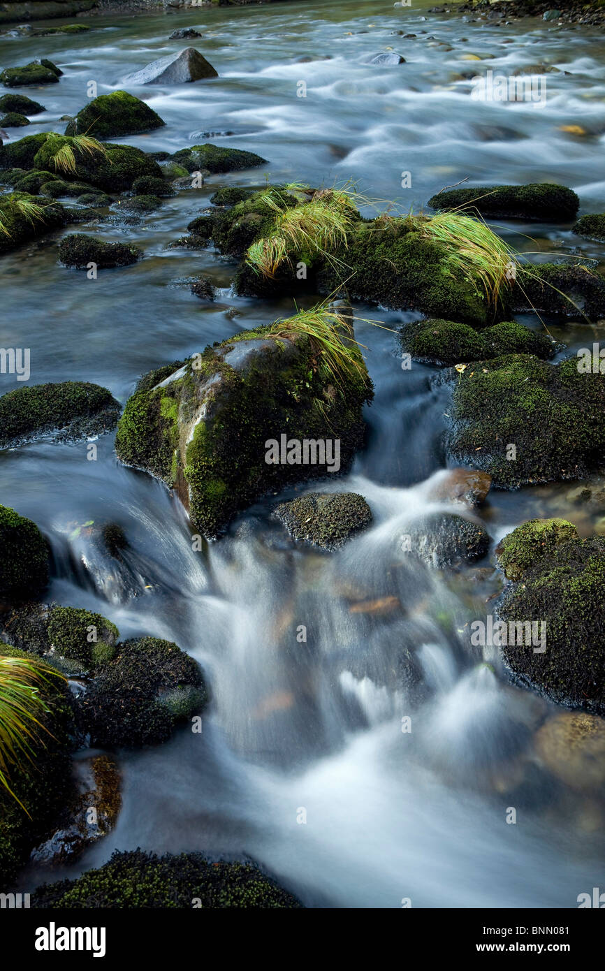 Small cascade tumbles over rocks in a mountain stream in Tongass National Forest, Alaska - Stock Image