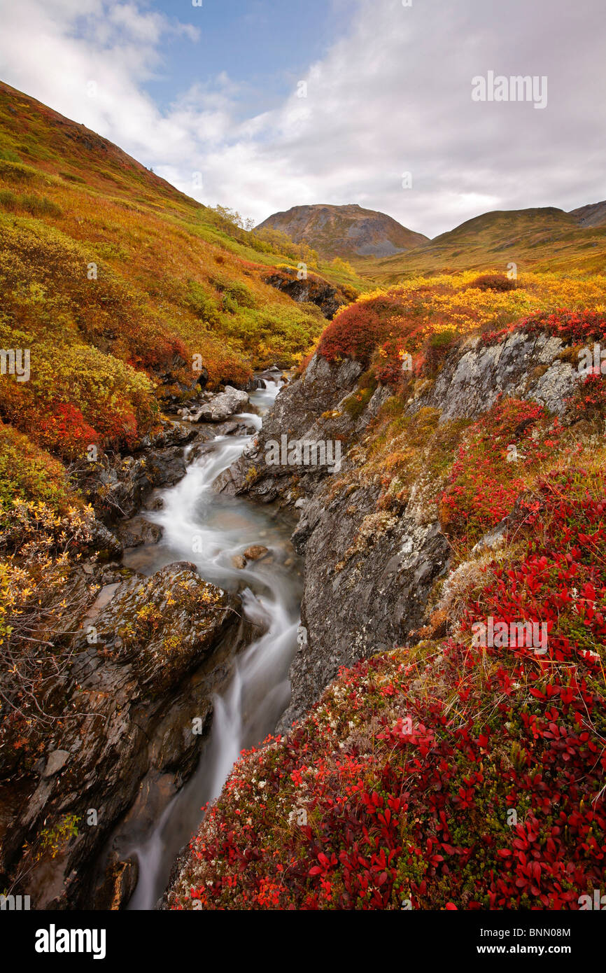 Small stream through the fall colored tundra in Hatcher Pass, Alaska - Stock Image