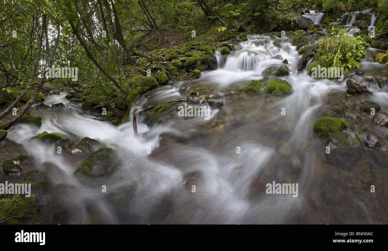 Falls Creek framed by green vegitation in Alaska during Summer - Stock Image