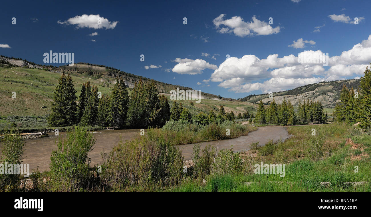 Crystal Creek hills trees Gros Ventre Road Kelly Wyoming USA - Stock Image