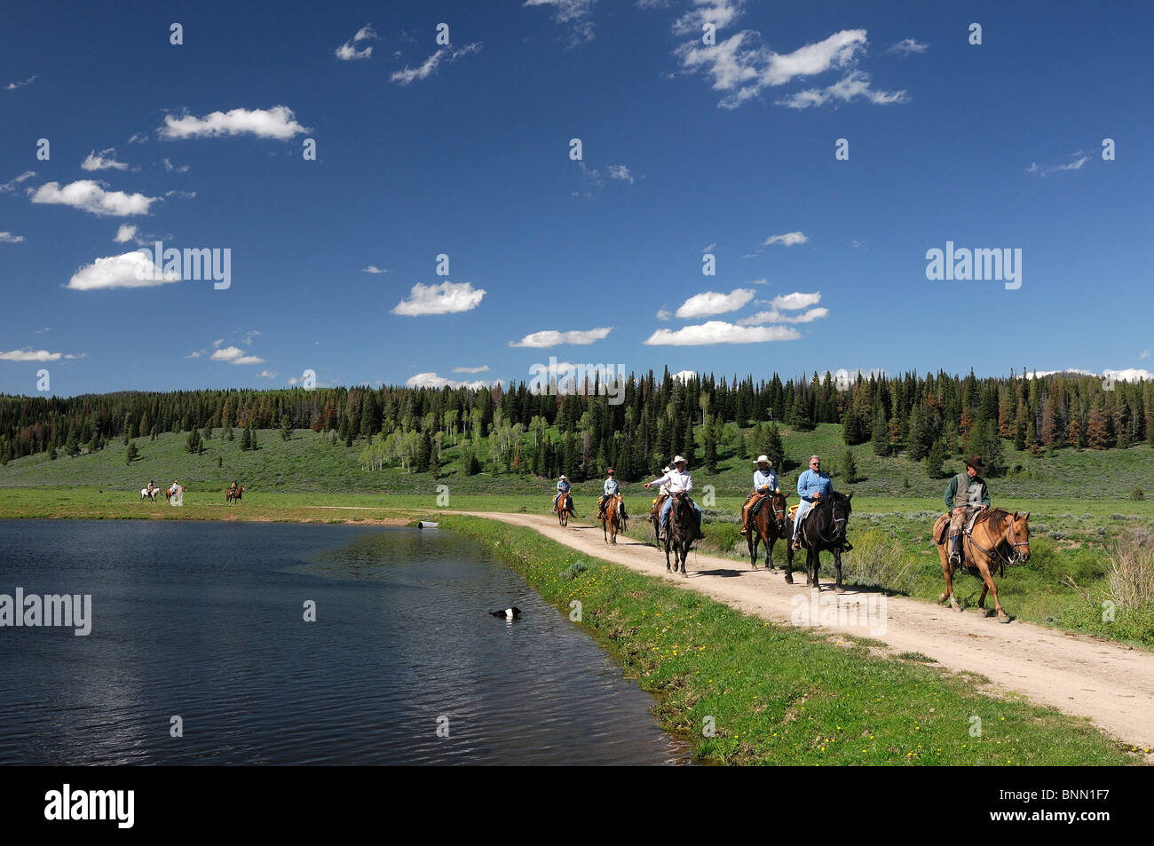 Panorama Guest's Horseback riding Flying A Ranch Guest Ranch Bondurant Wyoming USA forest lake Stock Photo