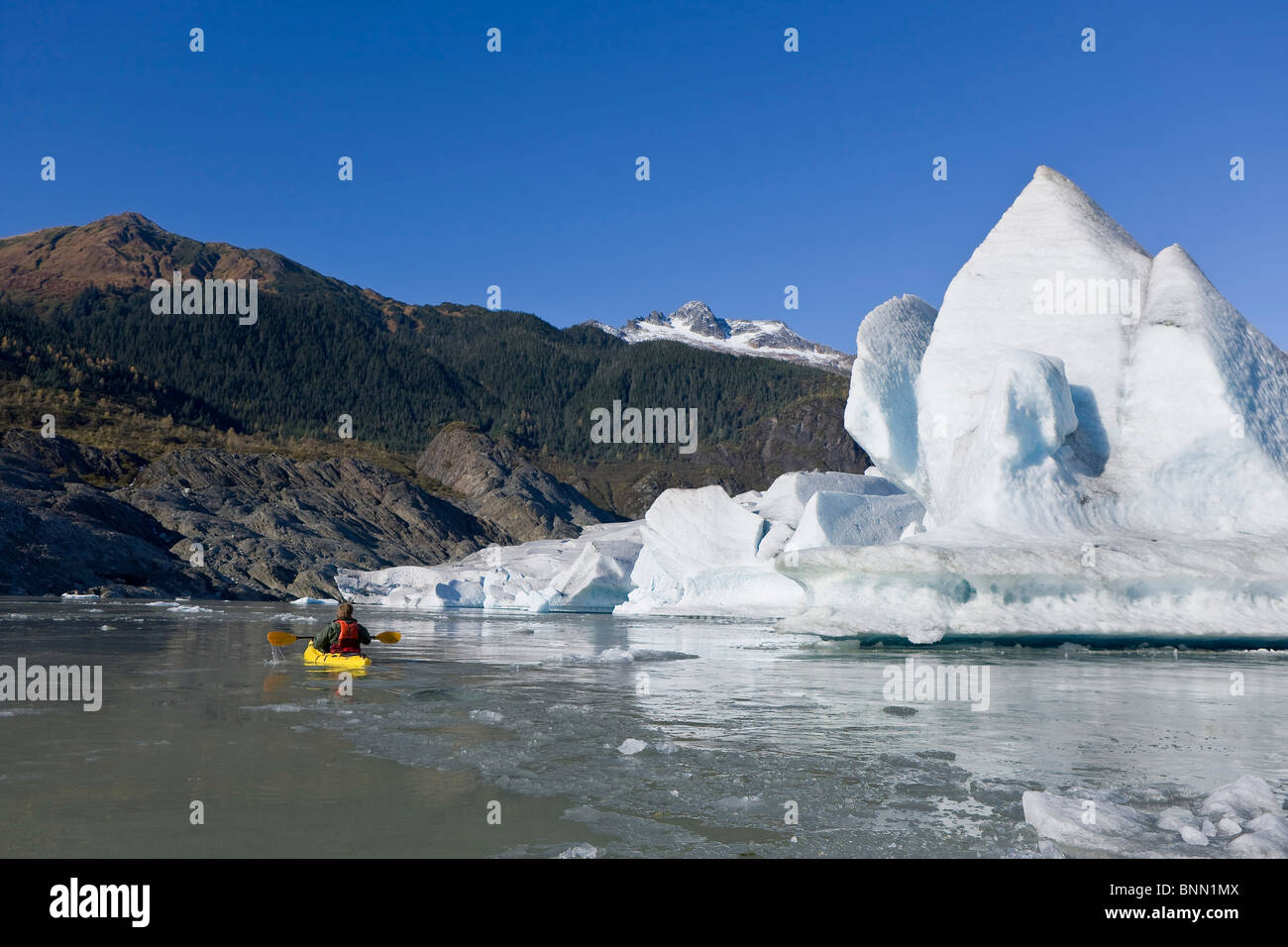 A kayaker paddles the icy waters of Mendenhall Lake with Mendenhall Glacier and Mt. Stroller White in the background, - Stock Image