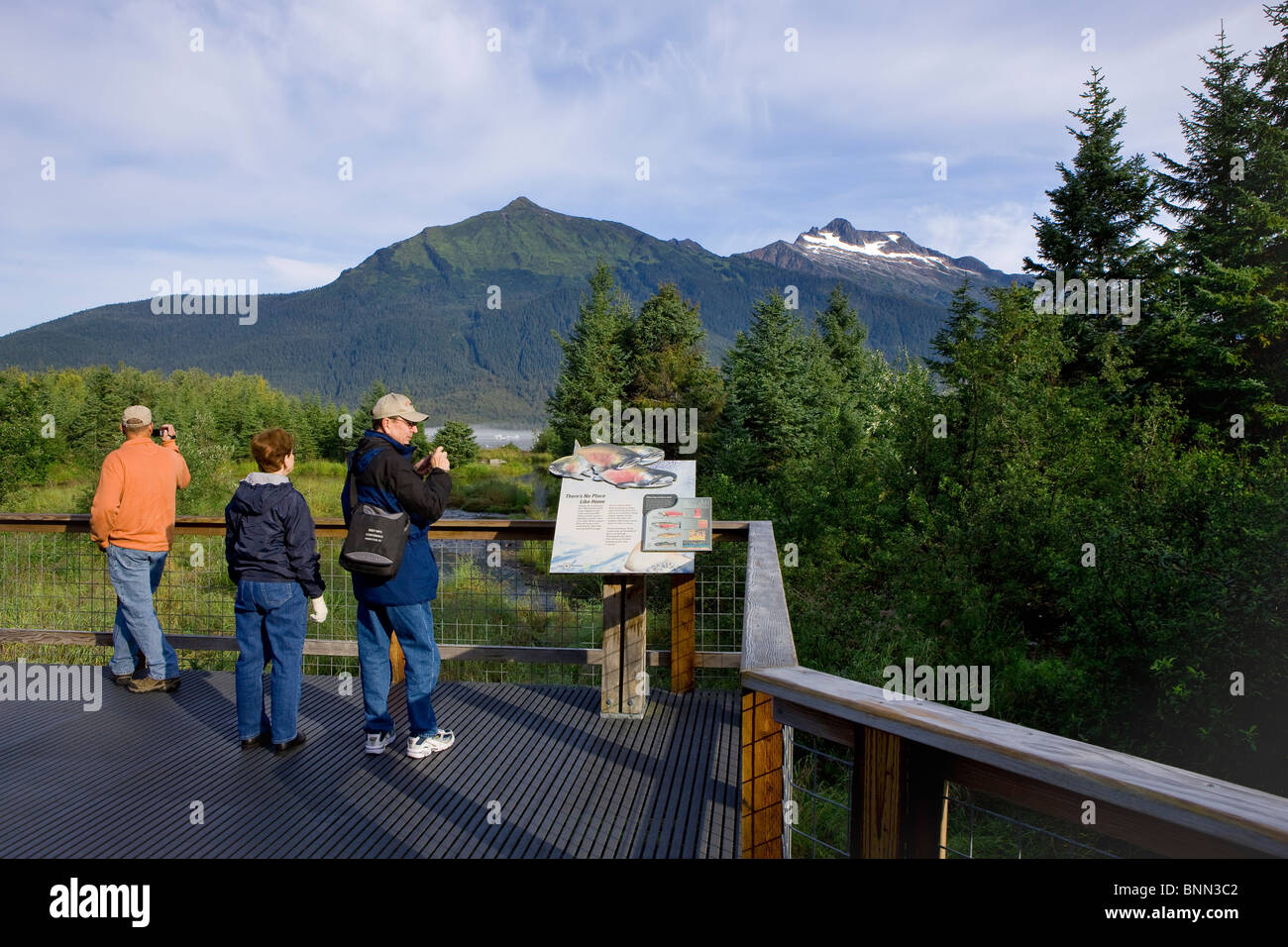 Visitors view a display explaining the life cycle of salmon that return to spawn in Steep Creek, Mendenhall Lake, - Stock Image