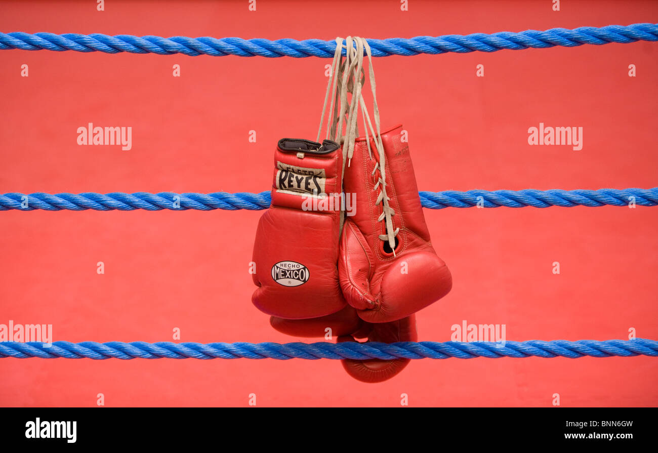 Red Boxing Gloves hang on the ropes of a boxing Ring. Picture by James Boardman - Stock Image