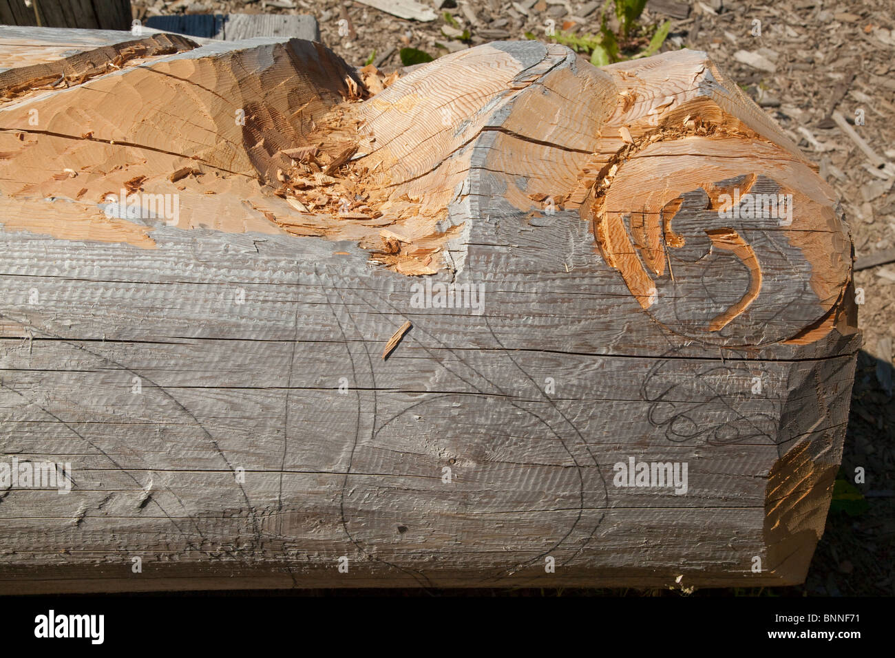 USA, Alaska, Kake -carving a totem pole - Stock Image