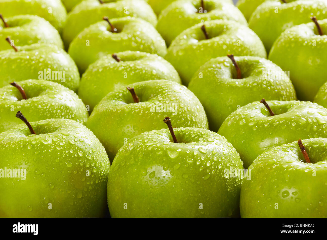 large group of granny smith apples in a row. Selective focus - Stock Image