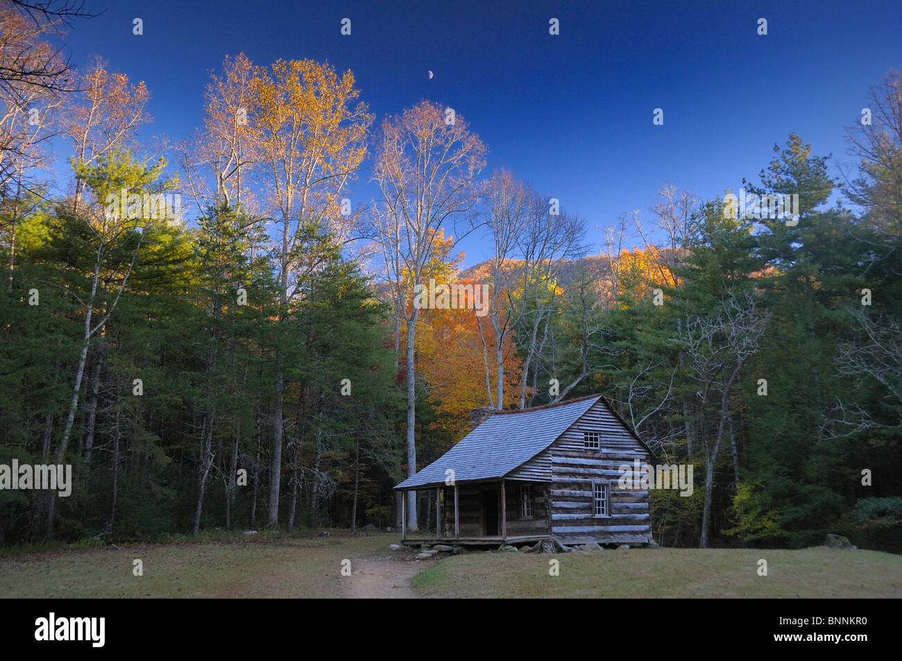 Carter Shield log house Cabin Cades Cove Great Smoky Mountains National Park Tennessee USA. Forest - Stock Image