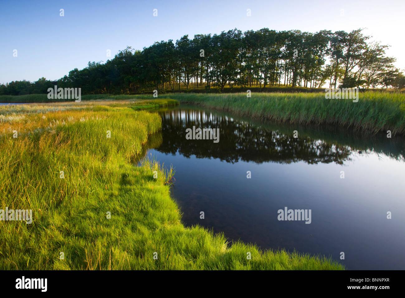 Urehoved Denmark island isle Aero coast wood forest marsh scenery lake sea reflection - Stock Image