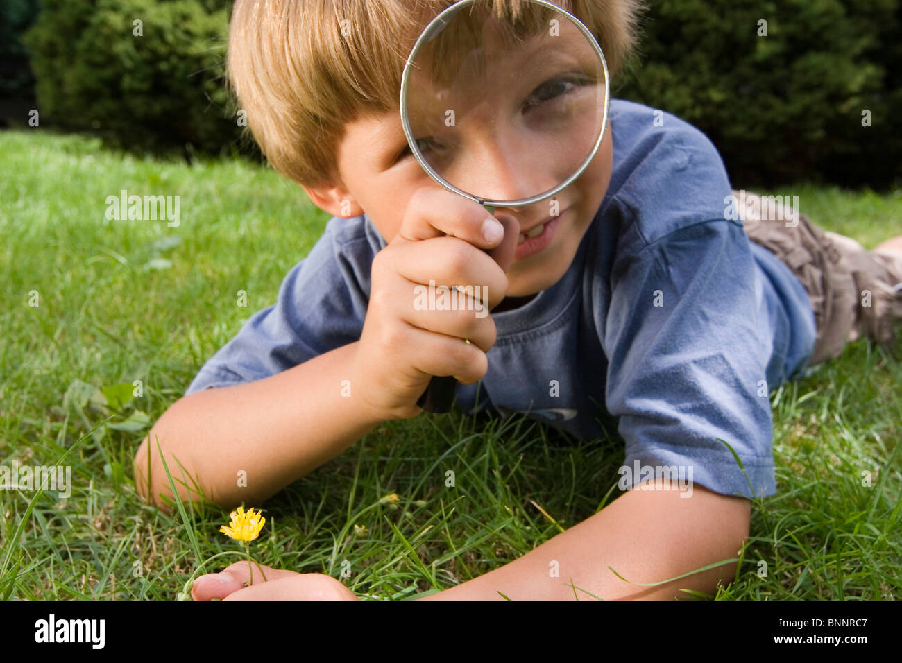 seven-year-old school age boy child boy curiously curiosity thirst for knowledge thirst for knowledge knowledge - Stock Image