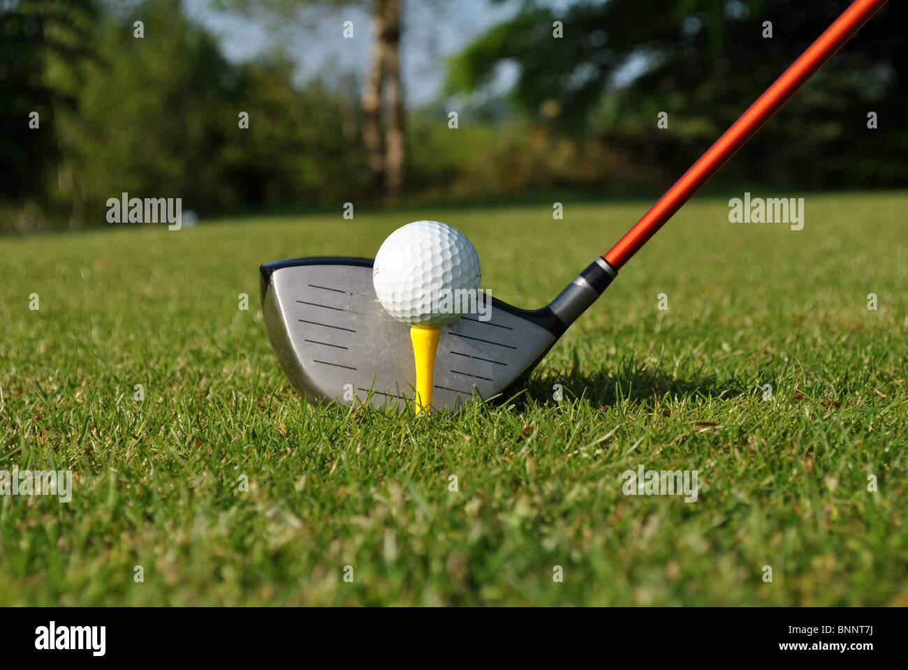 driver yellow tee and white golf ball - Stock Image
