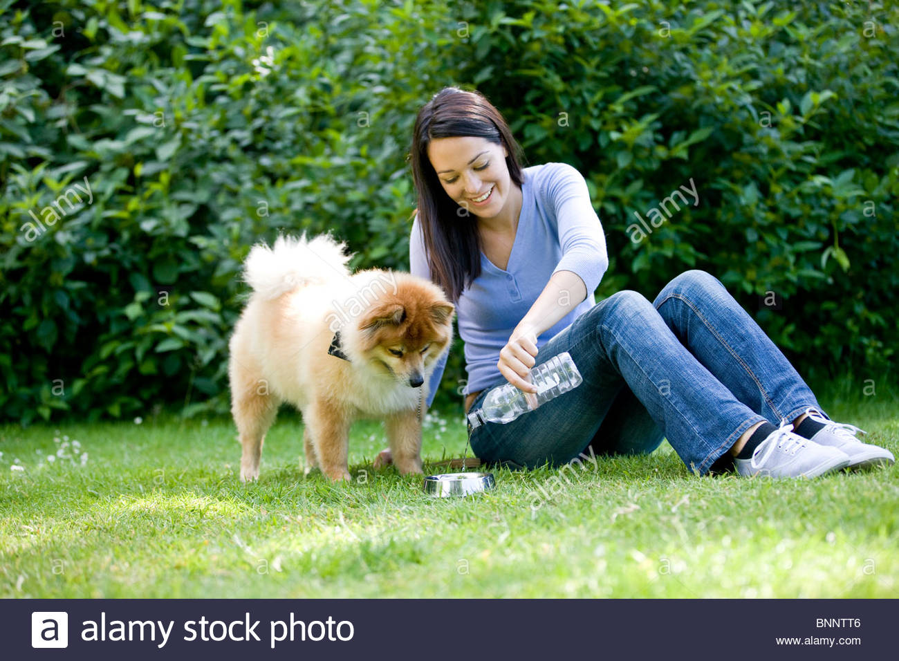 A woman sitting on the grass, pouring her dog a drink of water - Stock Image