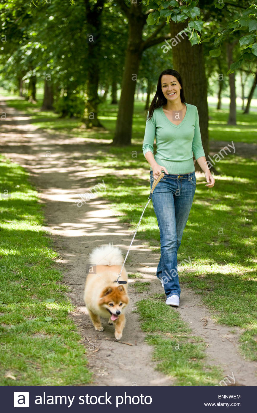 A young woman walking her dog in summer - Stock Image