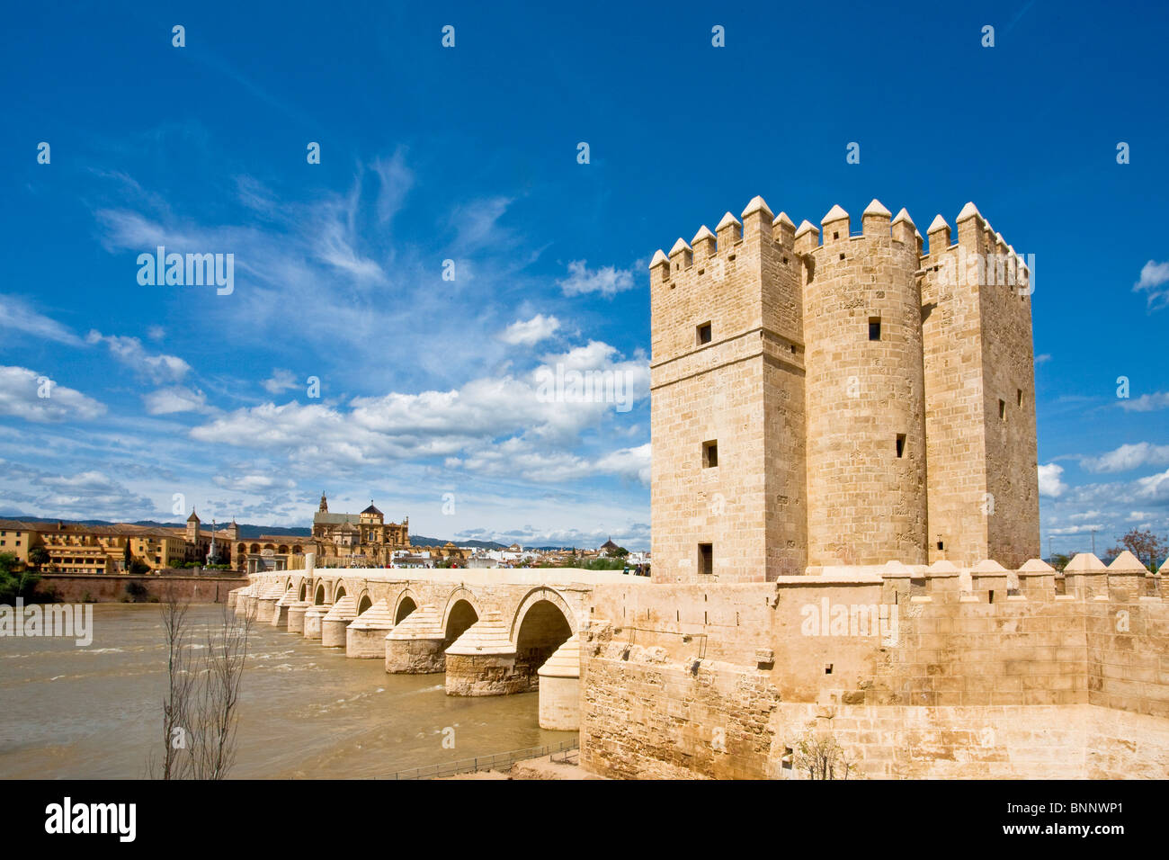 Andalusia Spain bridge Roman tower rook La Lalahorra traveling tourism vacation holidays - Stock Image