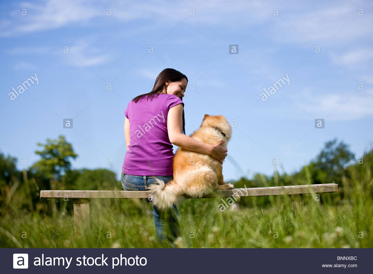 A young woman and her dog sitting on a bench - Stock Image