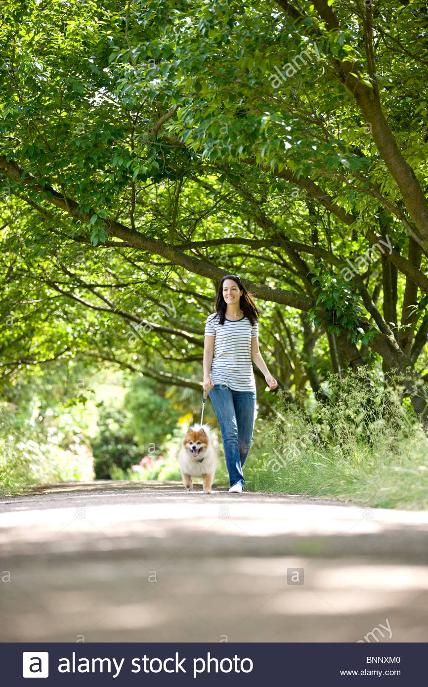 A young woman walking her dog in summertime - Stock Image