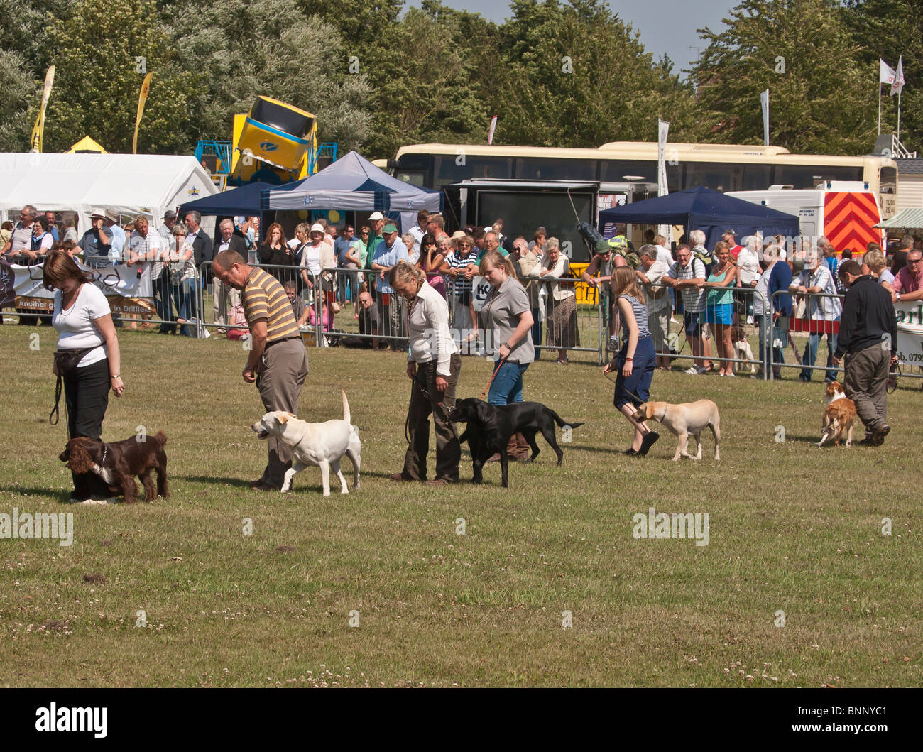 Dog handling class demonstration at Driffield Agricultural Show July 2010 - Stock Image