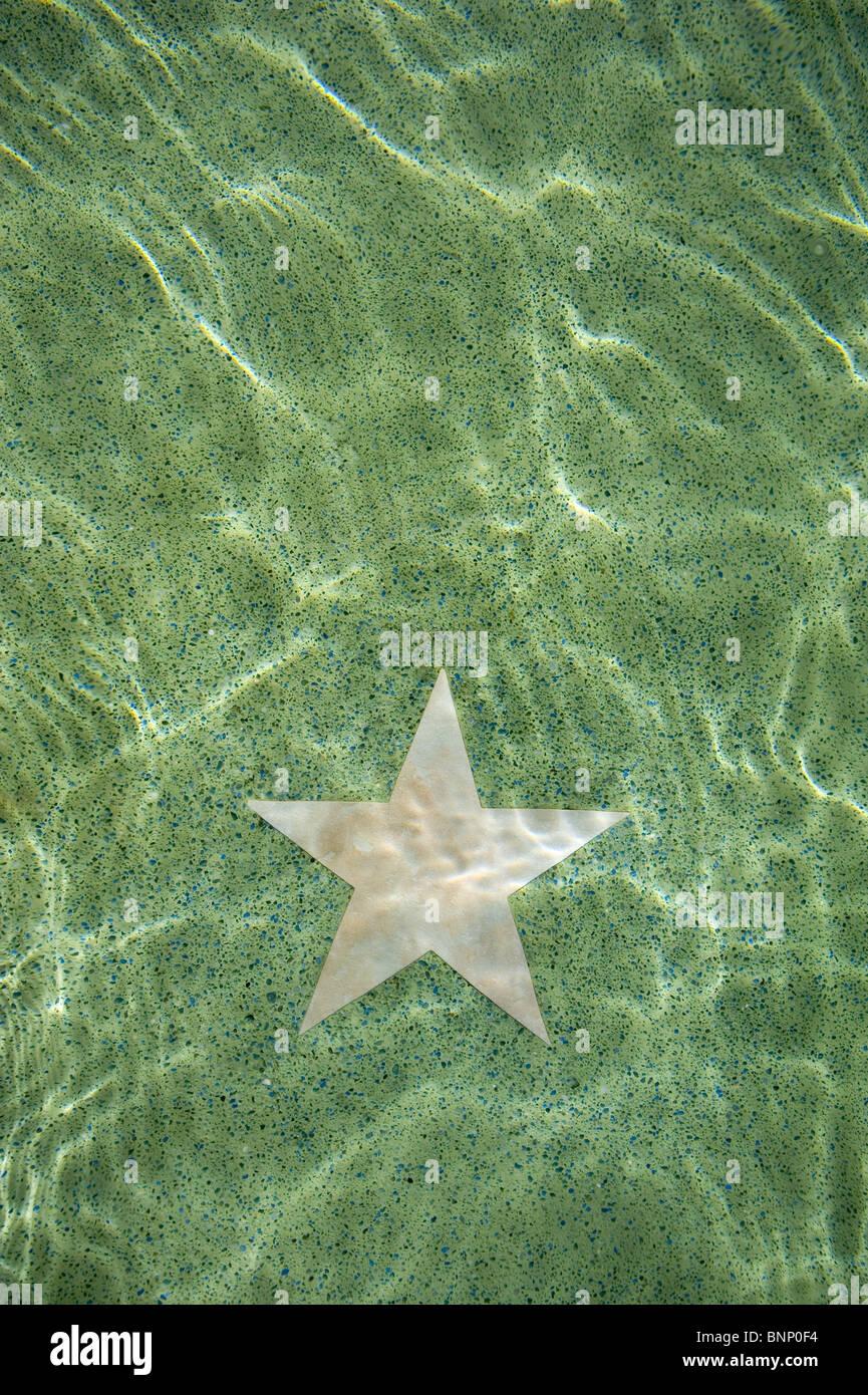 Star Reflection - Stock Image